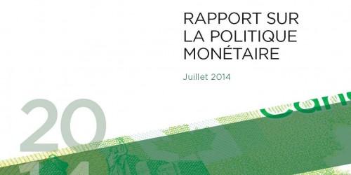 Rapport sur la politique monétaire - Juillet 2014