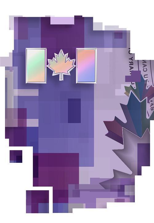 Drapeau canadien à reflets métalliques sur un billet de 10 $